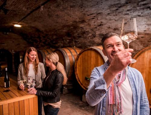 Langenlois: Weinschaun beim Winzer